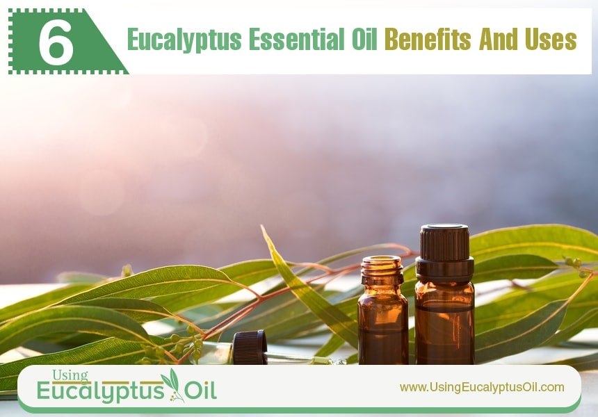 eucalyptus oil for skin
